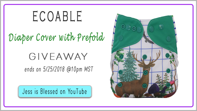 EcoAble Baby Cloth Diaper Cover Giveaway